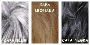 colores en el pelo pastor de Brie