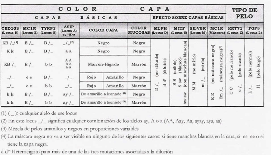 Tabla de genetica color capa y mucosa